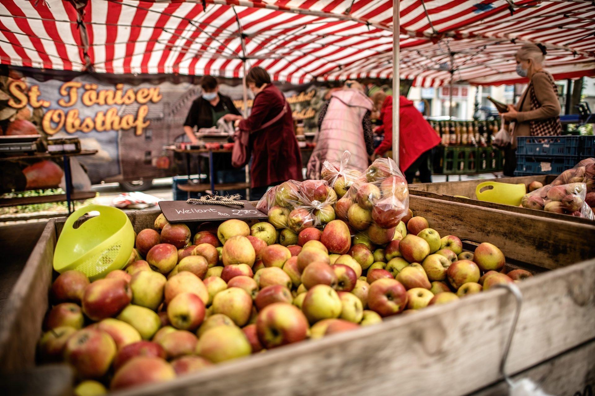 Typisch für einen Bauernmarkt: Die Äpfel sind nicht in Plastik eingeschweißt und genormt, sondern sie locken mit ihrer vollen, natürlichen Pracht. In der Stadt liebt man diese Märkte mit Produkten ausschließlich aus der Region. Foto: Andreas Endermann