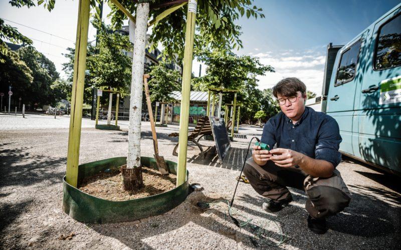Sascha Ronsdorf-Beer vom Gartenamt sieht auf seinem Messgerät, wie feucht es an verschiedenen Stellen unter der Erde ist. Foto: Andreas Endermann
