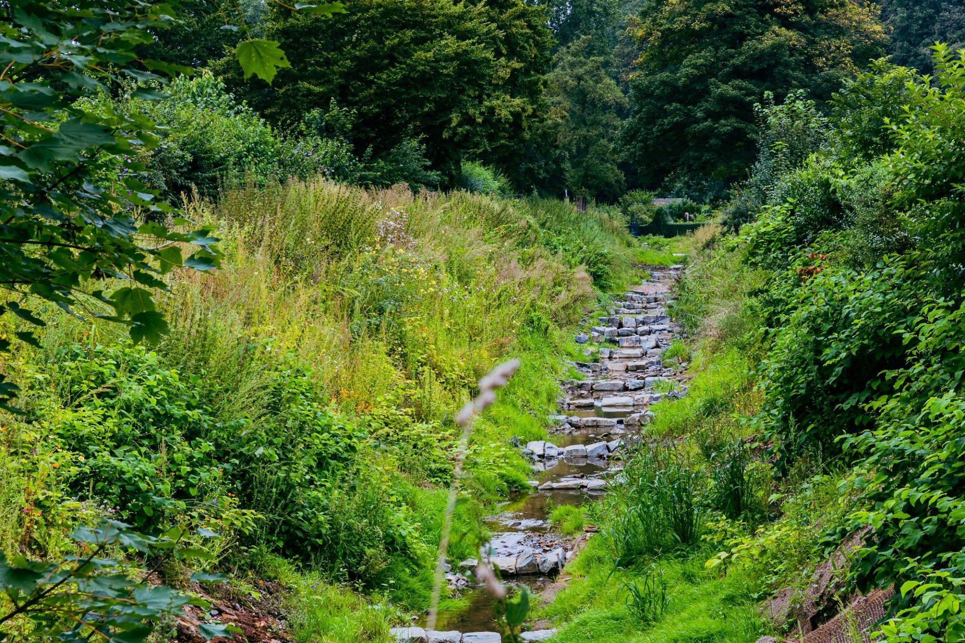 Naturnaher Ausbau heißt es, wenn Gewässer von Beton und Einengungen befreit und mit natürlichen Mitteln gestaltet werden, wie hier der Pillebach. Foto: Johannes Boventer