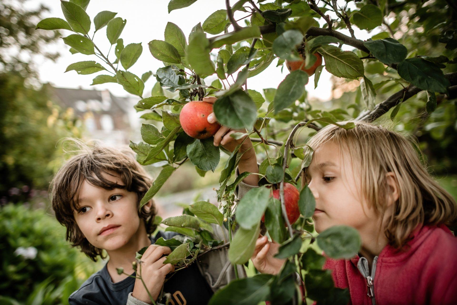 Wir sind alle Kinder von Mutter Erde. Was das für unser heutiges Leben bedeutet, erklärt unsere Kolumnistin in ihrem Artikel. Foto: Andreas Endermann